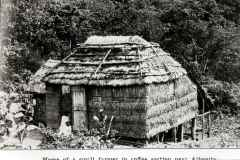 T-1914_Bohio_Aibonito_Bills_HousingConditions