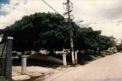 T-1996_025_Aibonito_Calle_ASR