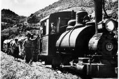 T-1940_TrenCentralLosCañosArecibo_RM