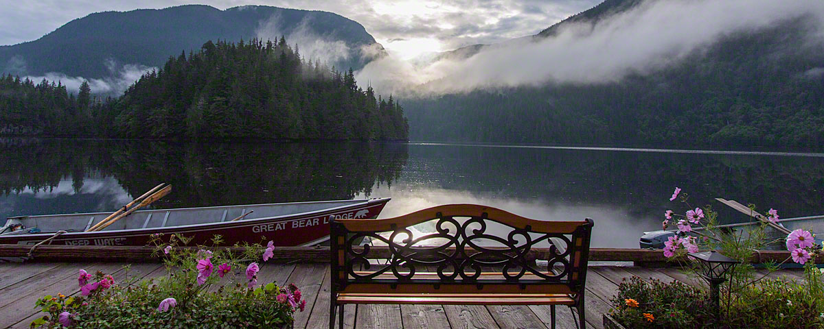 Beautiful morning in the Great Bear Rainforest