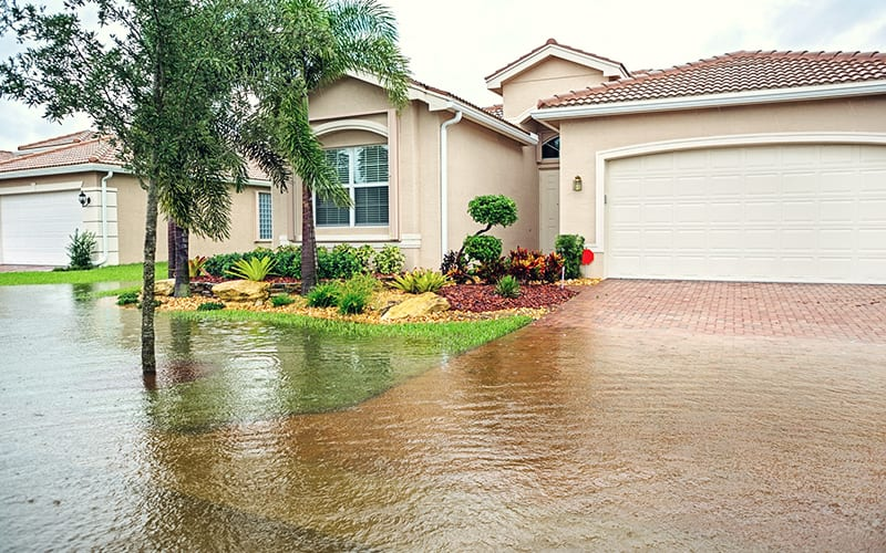featured-live-flood-zone