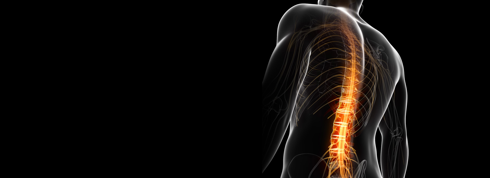 Connect with India's Best Spine Practitioners