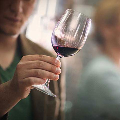 Winery Loyalty Program Case Study