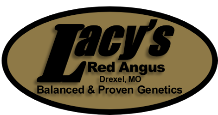 Lacy's Red Angus