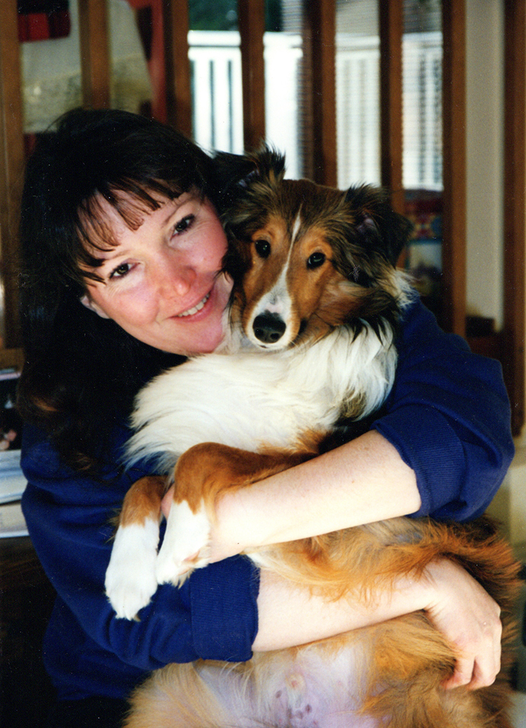 Seattle Purebred Dog Rescue Sheltie