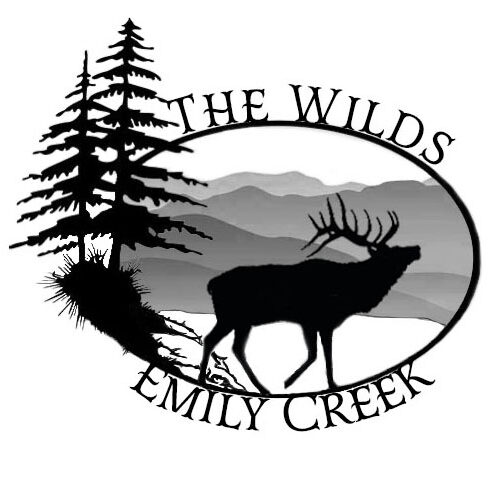 The Wilds of Emily Creek