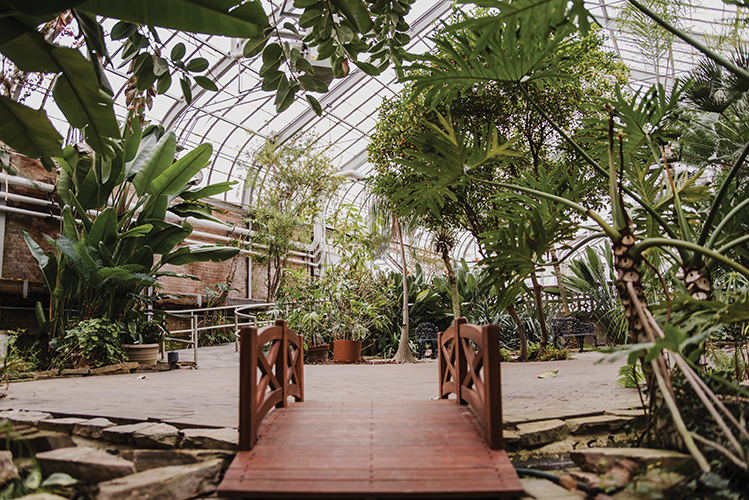Potawatomi Conservatories emerge from tragedy stronger than ever