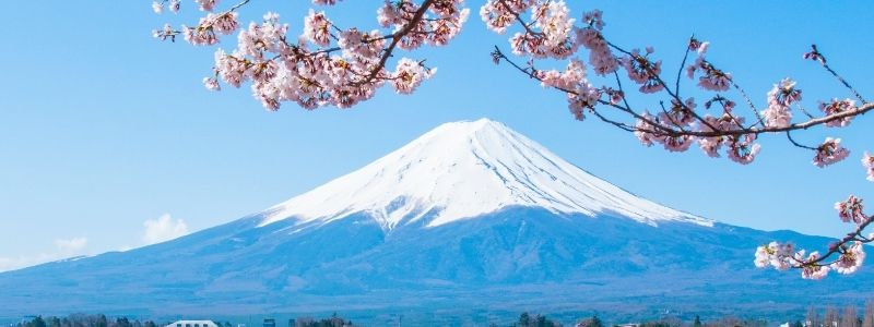 A japan tourist took a picture of mt fuji for the first time