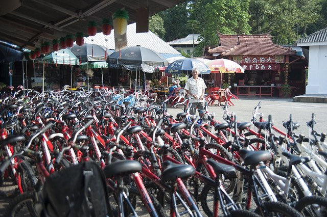 Get your own bike, or rent from the shops at Palau Ubin
