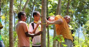 timor leste reforestation