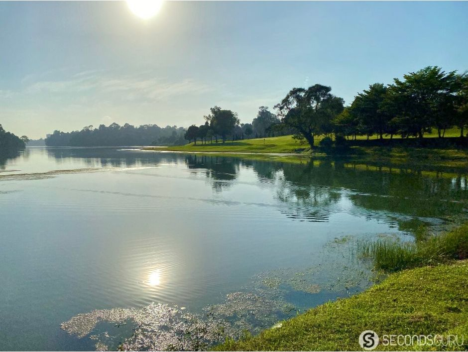 MacRitchie lake