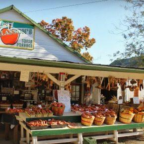 McGlasson's Farm in Boone County