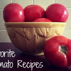 My Favorite Tomato Recipes