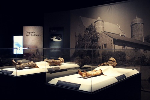Mummies of the World 1
