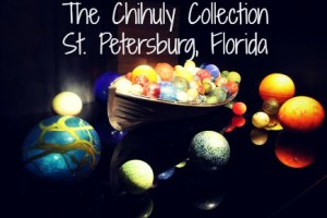 The Chihuly Collection in St. Petersburg, Florida