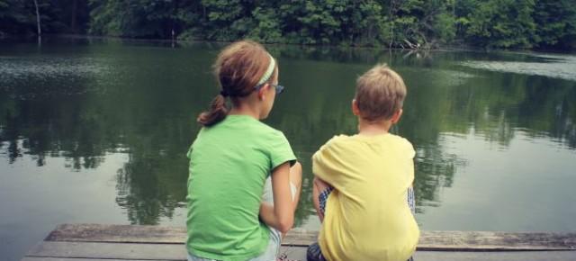 Rowe Woods Cincinnati Nature Center