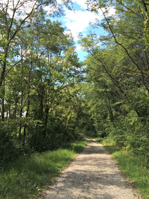 Doe Run Lake Trail