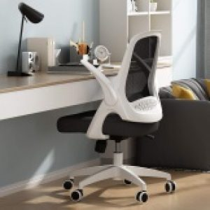 Best Ergonomic Office Chair, Best Ergonomic Office Chair to buy