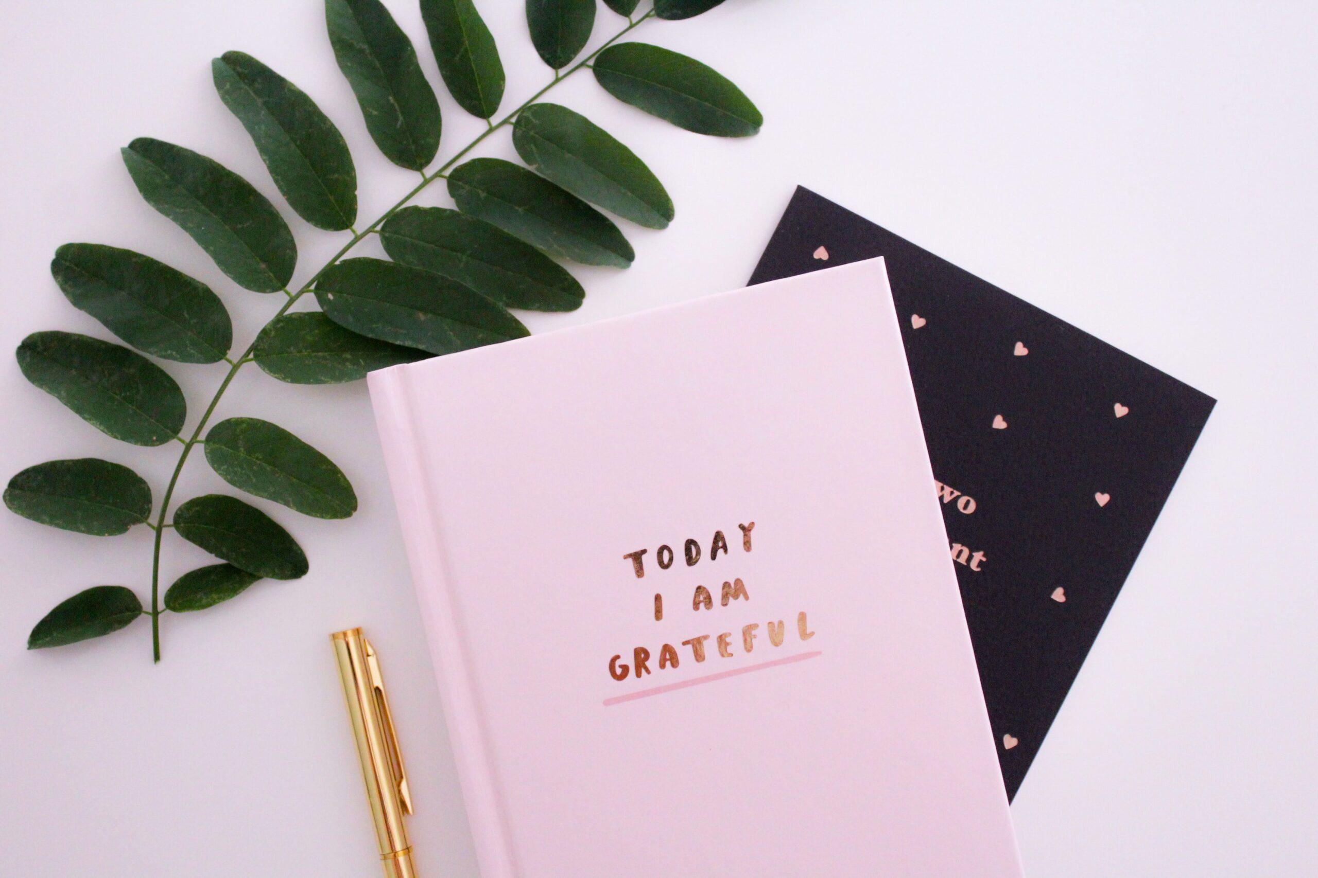 grateful, journaling,selfishness,envy,comparison