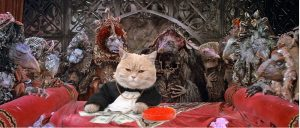 cash cat with skeksis