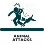 ANIMAL ATTACK ICON