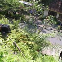 BALI 2006 OCT039