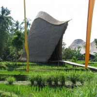 BALI 2009 MARCH35