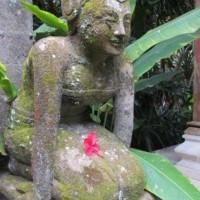 BALI 2012 NOVEMBER045