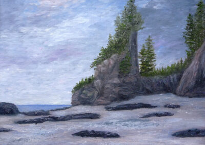 Fundy Bay Sentinels