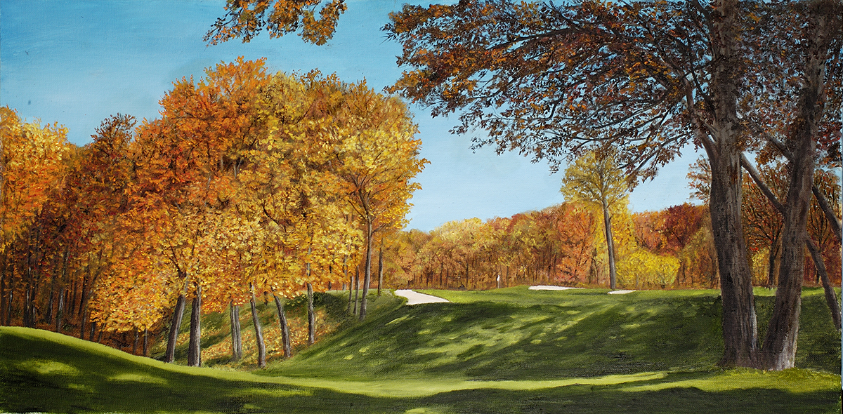 Oakwood Golf Course #9, Coal Valley, IL