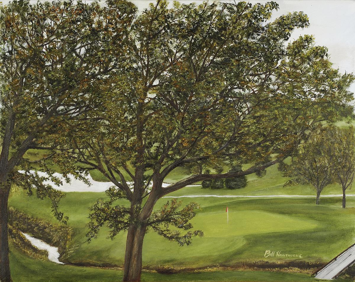Palmer Hills Golf Course #14, Bettendorf, IA