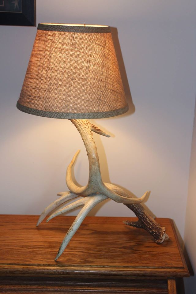 Antler Artistry Table Lamp