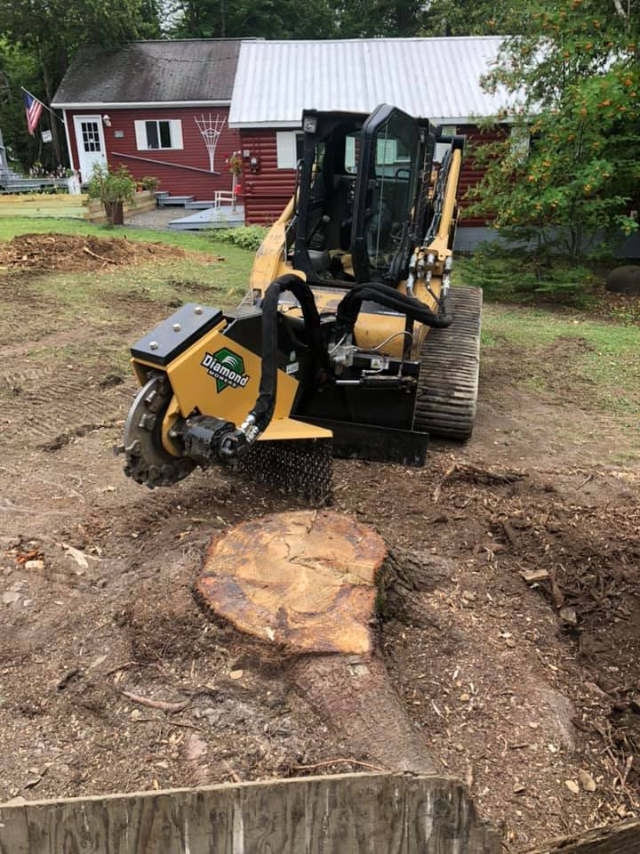 Marquis Tree Works (Stump Grinder)