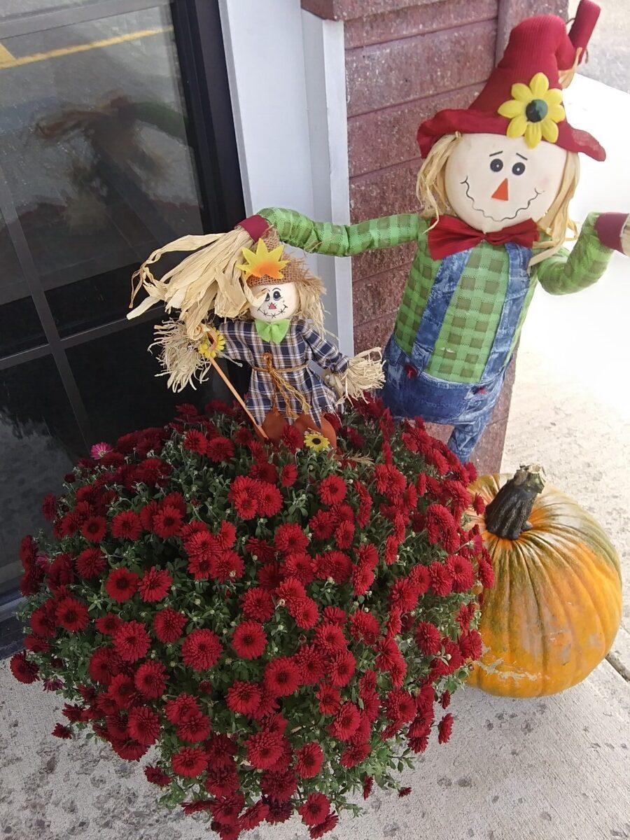 NorState FCU 2020 Scarecrow Festival Decor Unmasked