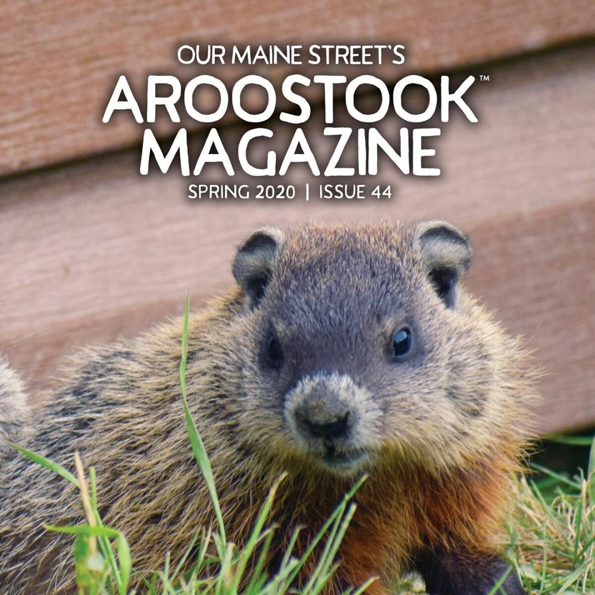 Our Maine Street's Aroostook Magazine Spring 2020 Cover (photo by Vonda Lavway)