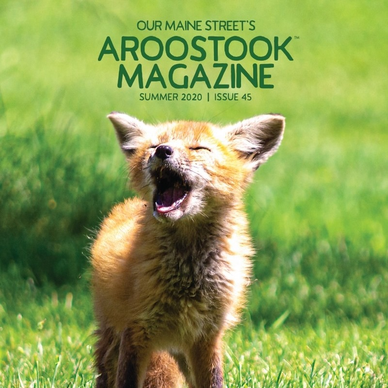Our Maine Street's Aroostook Magazine Summer 2020 Cover (photo by Christopher Mills)