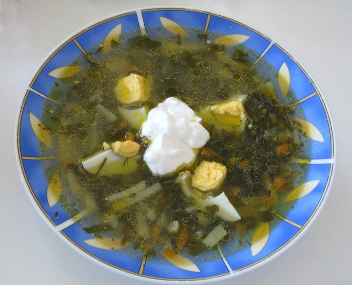 Schav, Sorrel soup with eggs and sour cream