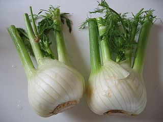 2 fennel bulbs