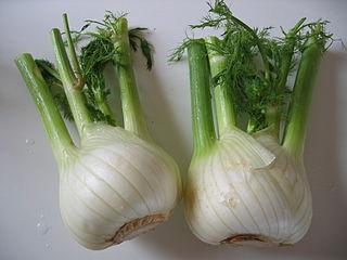 2 fennel bulbs