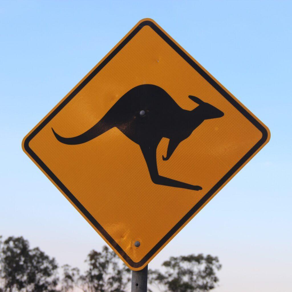 Kangaroo crossing sign Australia