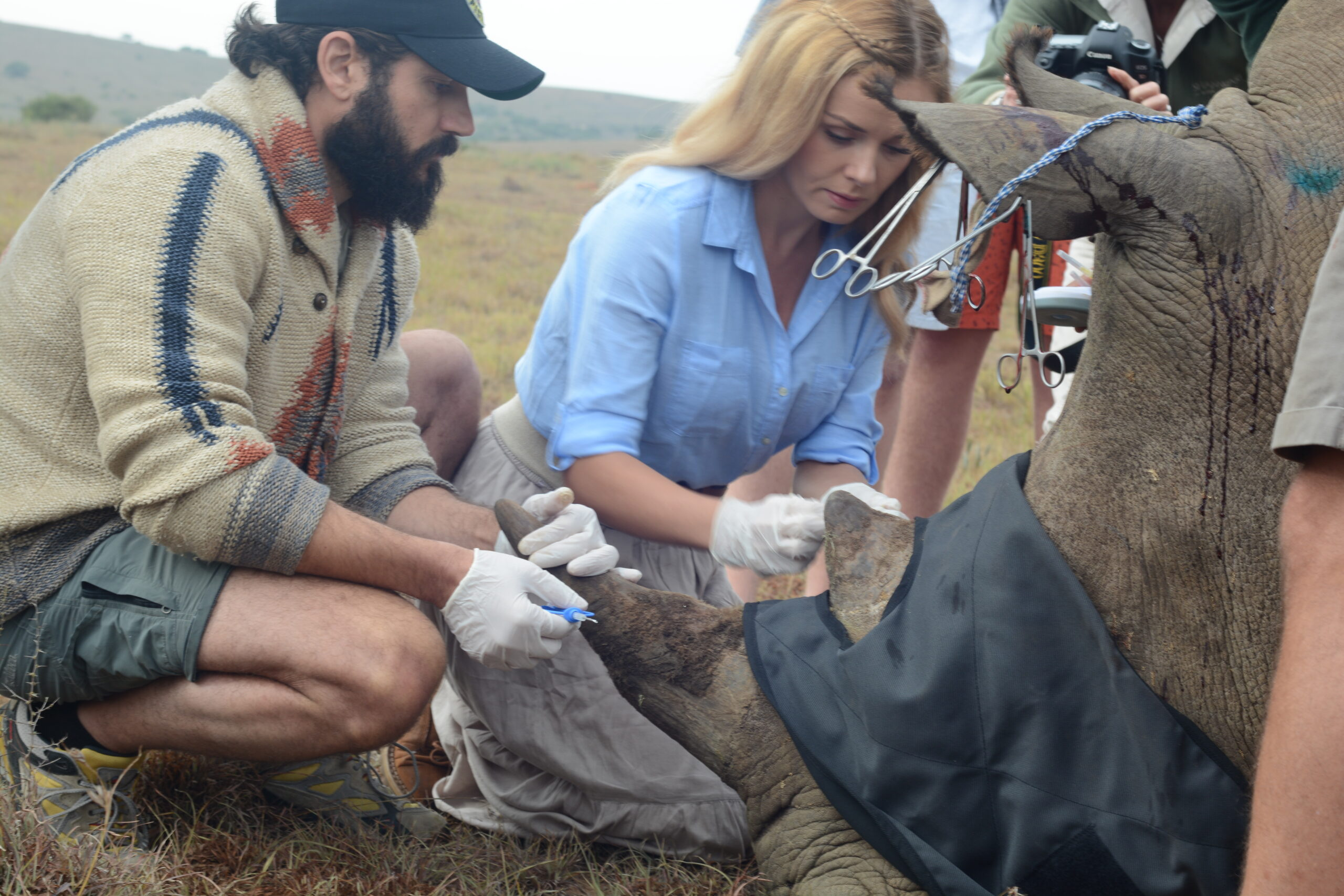 Katherine Jenkins & Andrew Levitas working with Tusk Foundation helping a rino