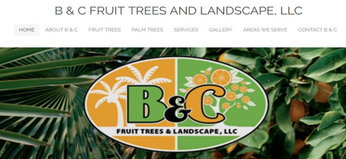 B AND C FRUIT TREES & LANDSCAPE