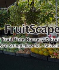 FRUIT SCAPES LLC