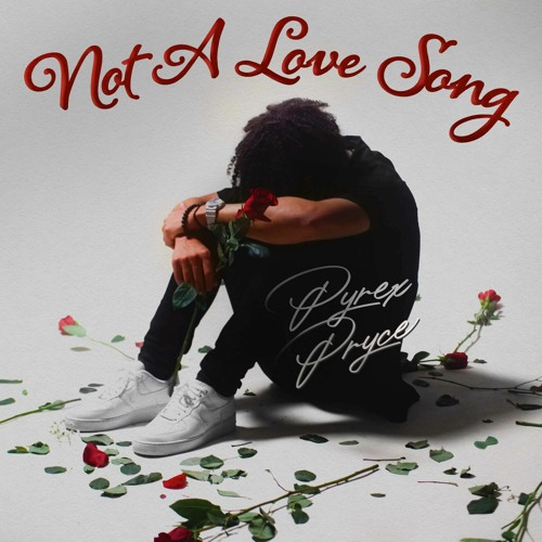"""Pyrex Pryce Rising To The Top With New Hit Single """"Not a Love Song"""""""