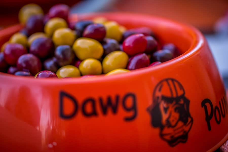 Dawg Pound  Jaworski Meats Social Events Cleveland Browns Tailgate