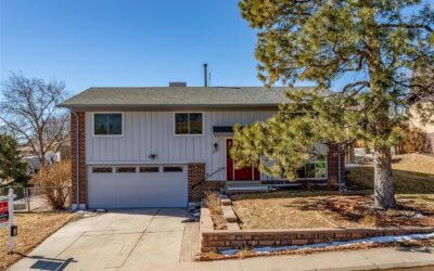 SOLD: Hip Remodel with Modern Finishes in Lakewood