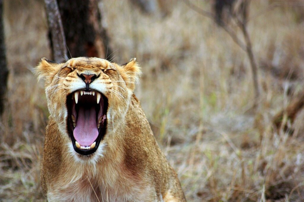 How to Control Anger: Tips to Help You Stay Calm