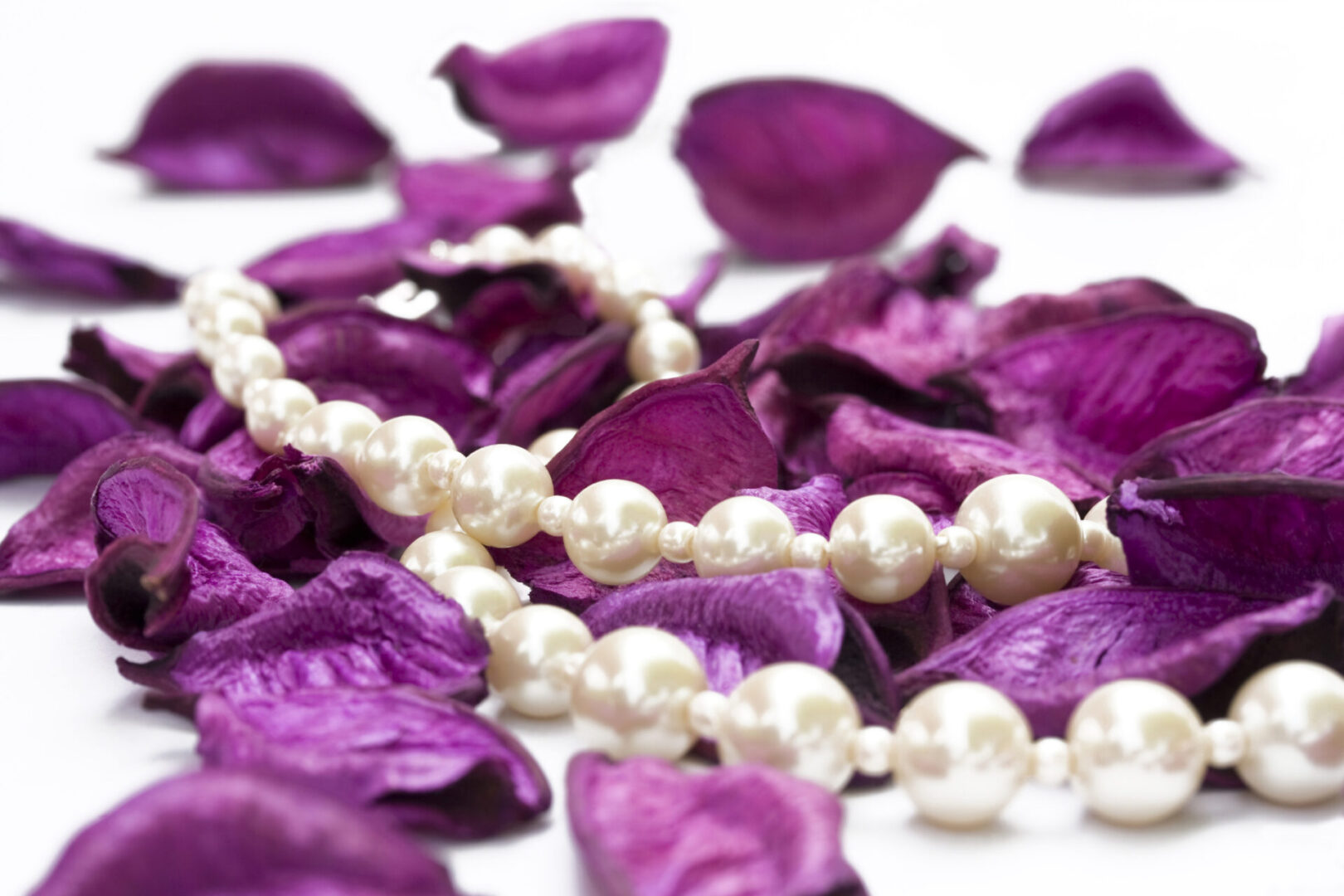 pearls on purple petals