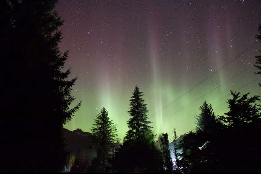 Northern lights above the rain forest in Juneau, Alaska