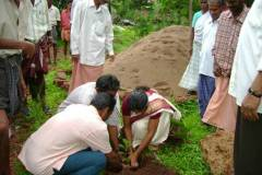 Planting-of-Tree-saplings